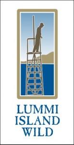 LIW_logo